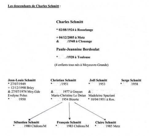 la-descendance-de-charles-schmitt-bis.jpg